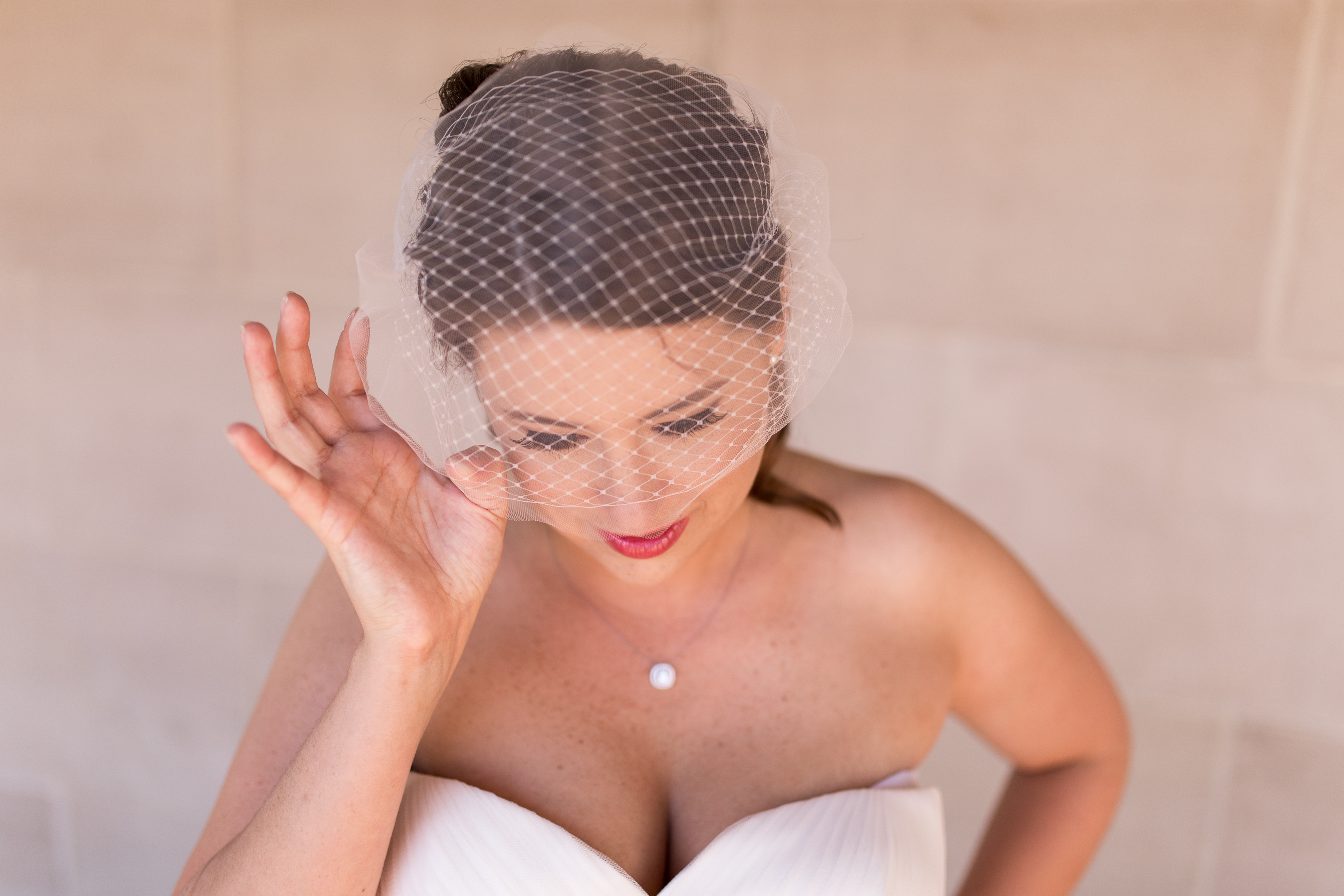 bride with birdcage veil at Minnetrista in Muncie Indiana