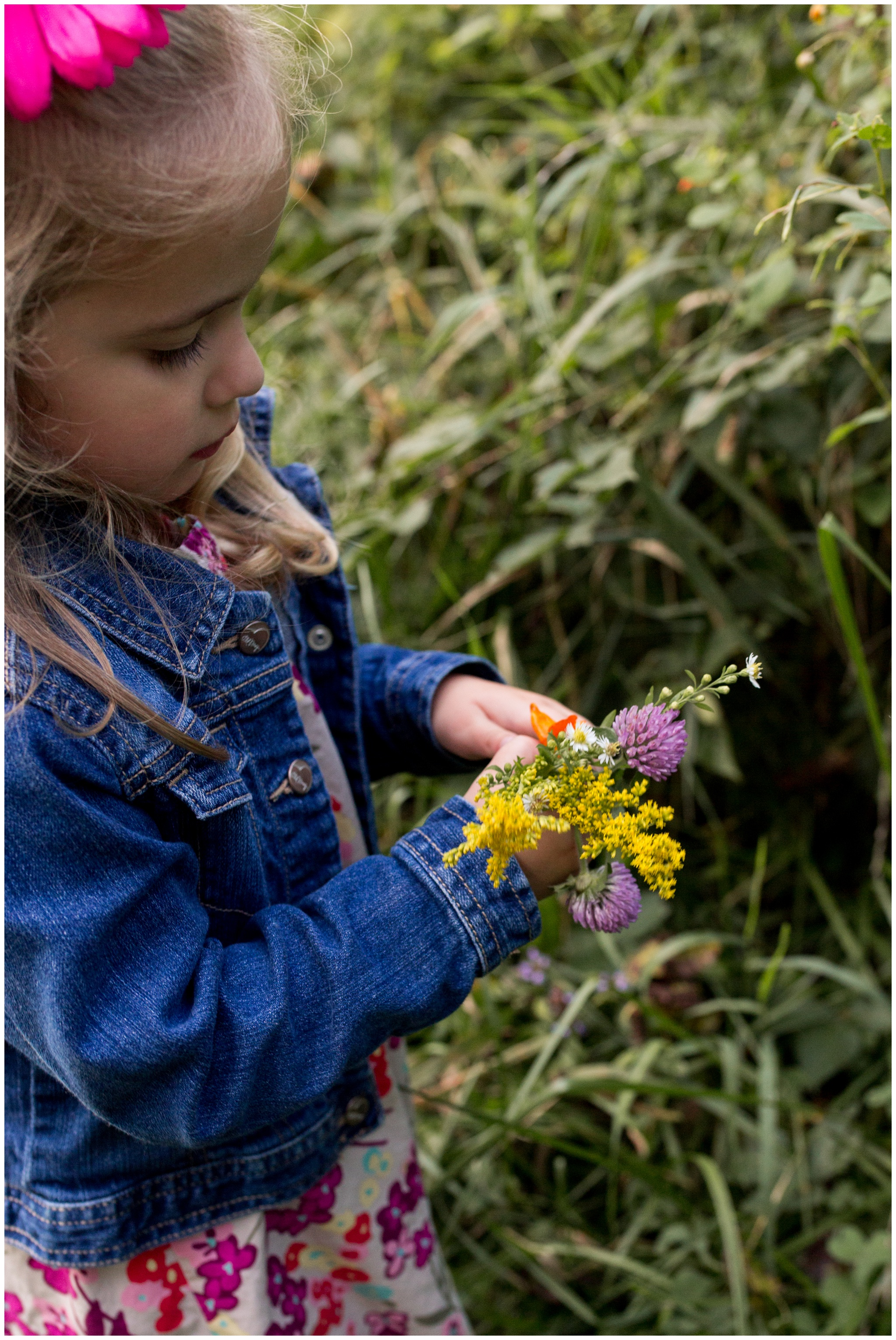 little girl picking flowers during family photos at Wildcat Creek Reservoir Park in Kokomo Indiana