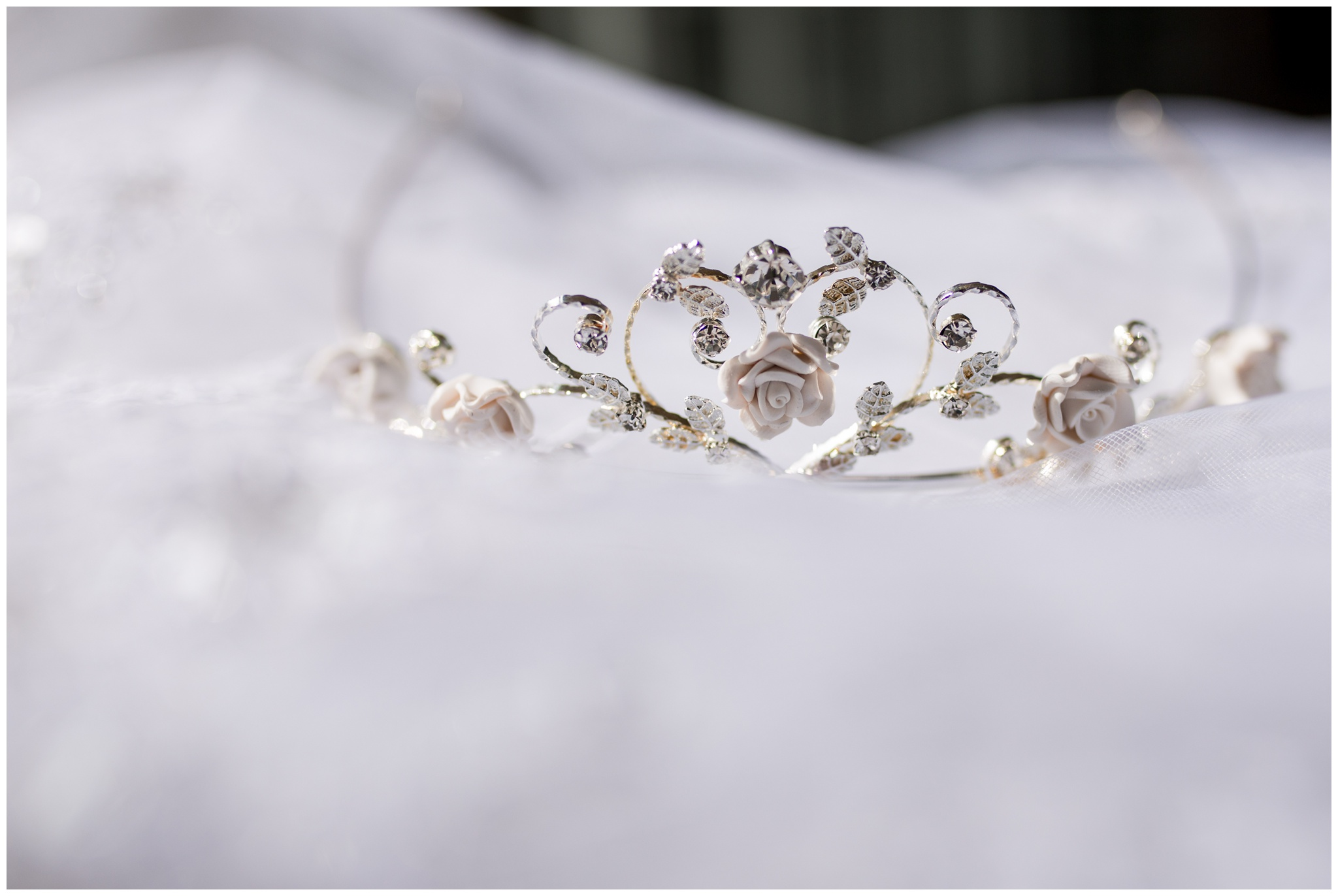 bride's tiara at Community Life Center wedding in Indianapolis Indiana