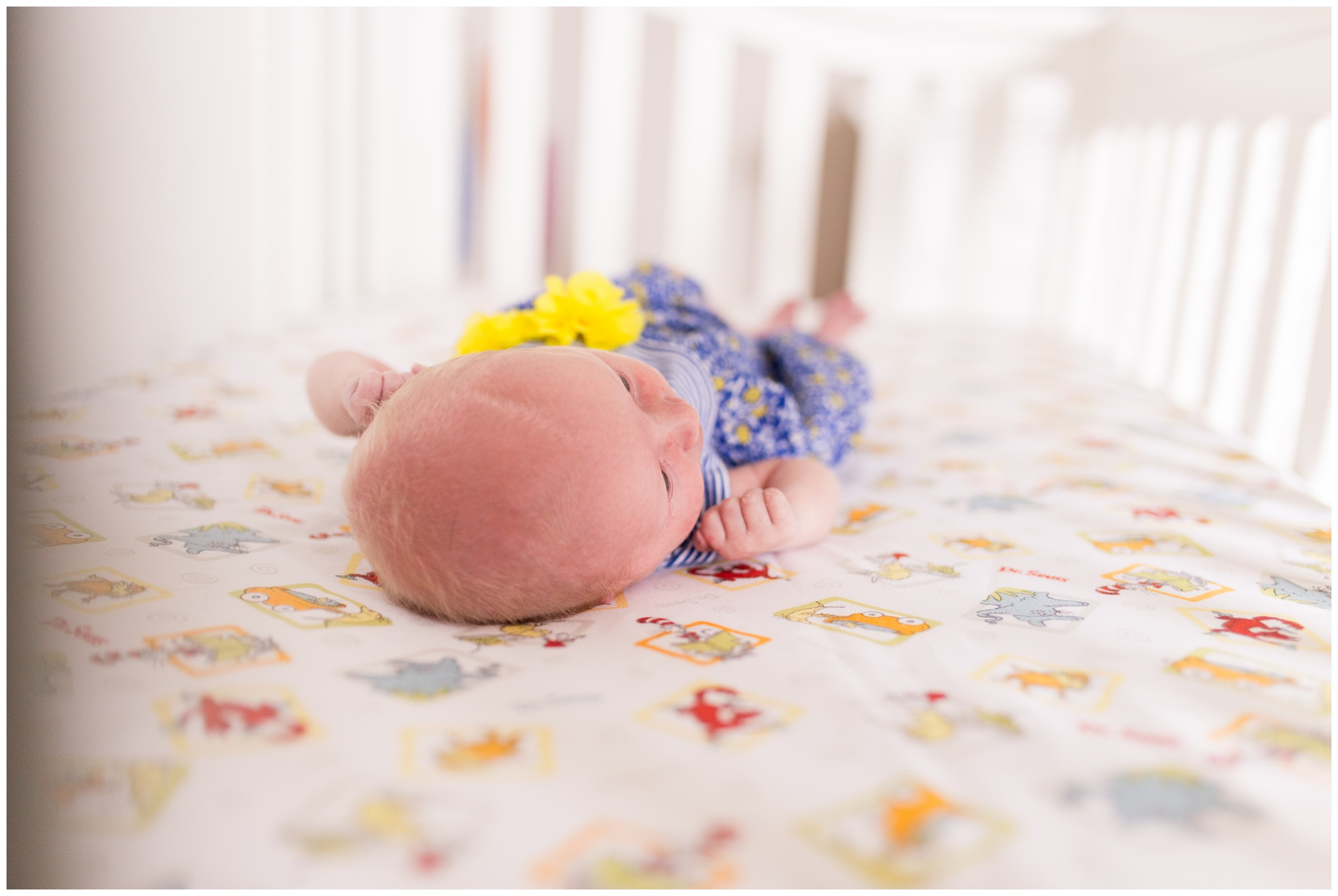 top of baby's head shot in crib during Indianapolis newborn lifestyle session