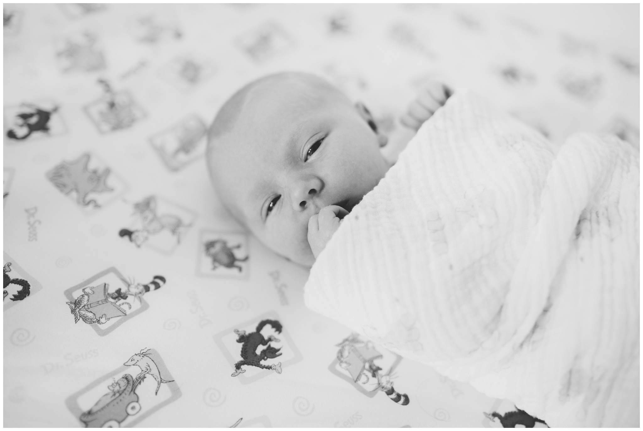 baby swaddled in crib during Indianapolis newborn photography session