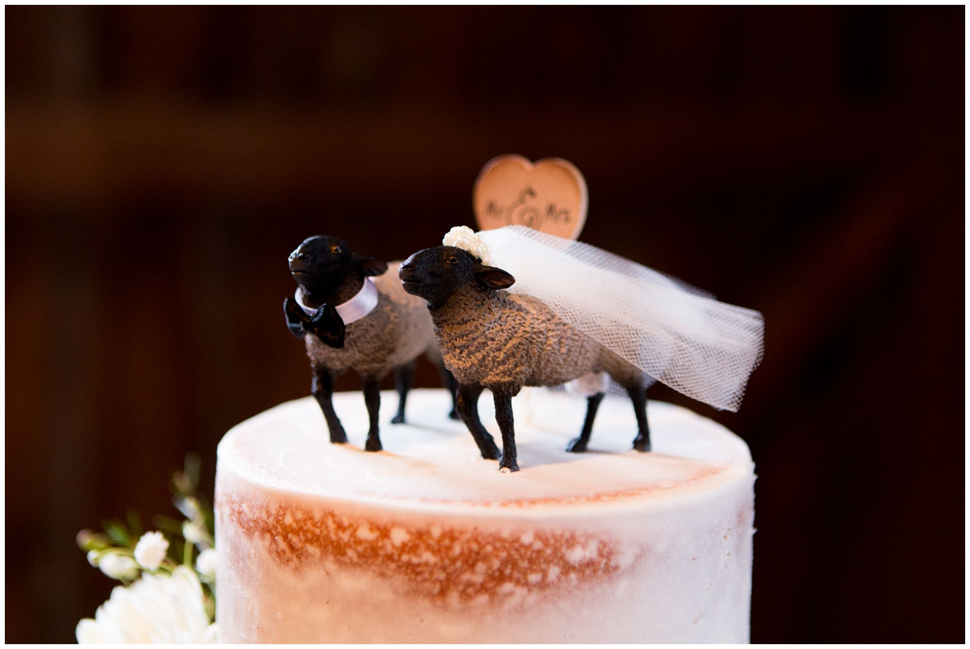 bride and groom sheep cake topper at Mustard Seed Gardens wedding reception