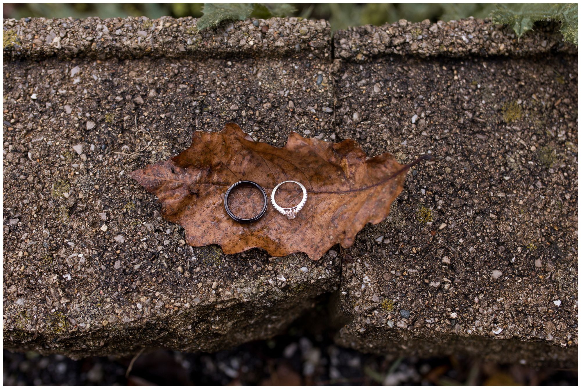 bride and groom rings on fall leaf during Peru Indiana wedding