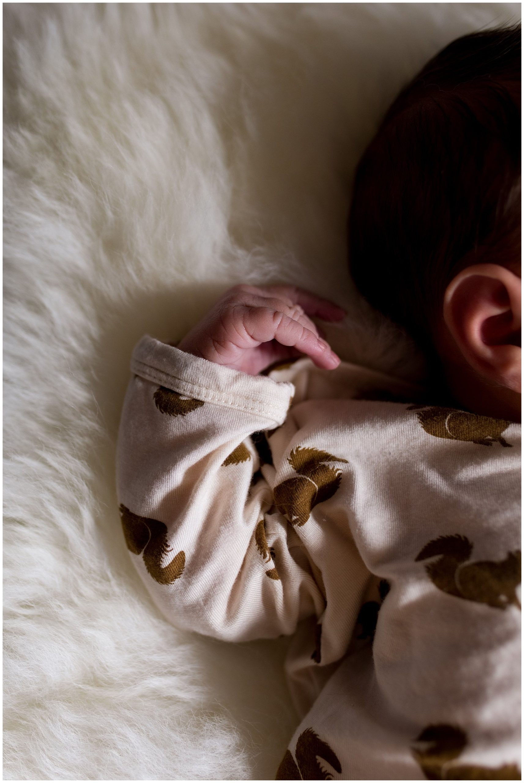 newborn's hands during newborn session in Indianapolis